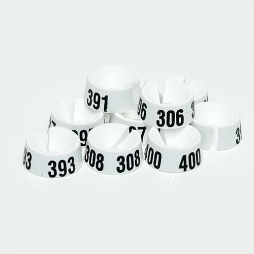 Größenreiter Nummer 301-400