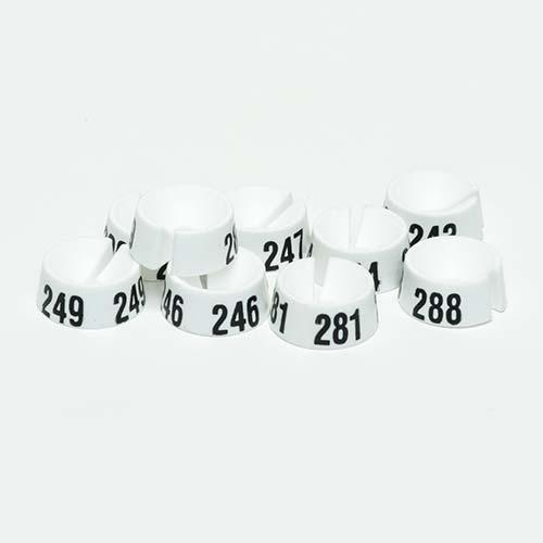 Größenreiter Nummer 201-300