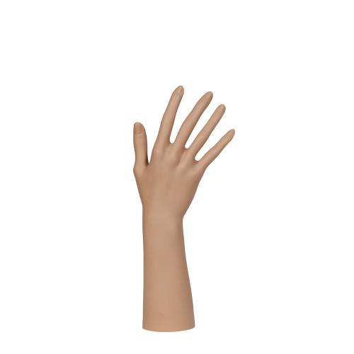 Hand-Display