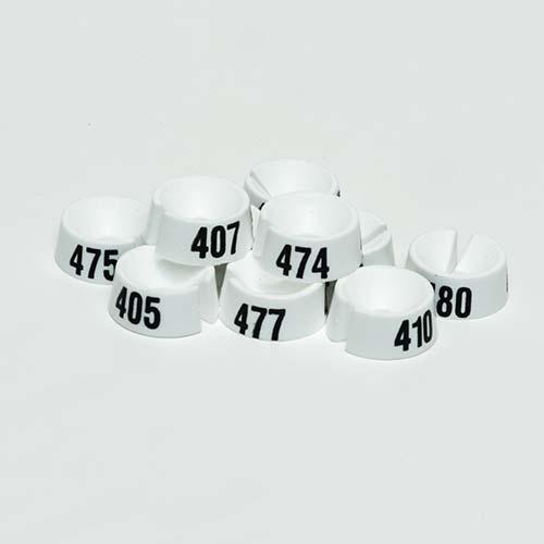 Größenreiter Nummer 401-500